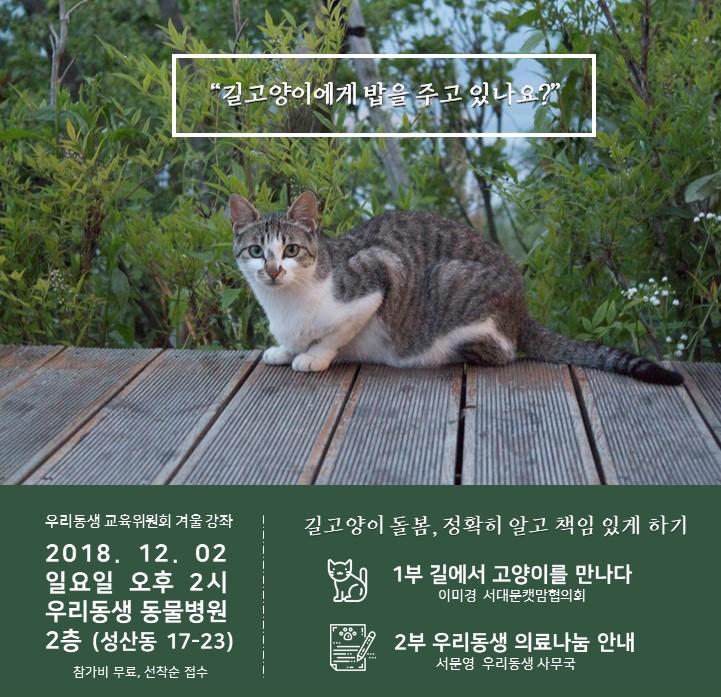 길고양이돌봄교육_웹포스터